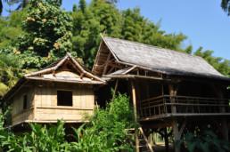 Bambouserai Anduze Mas des Chenes