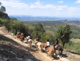 Camping cevennes balade chevaux